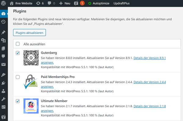 WordPress Plugin Updates installieren über WP-Admin