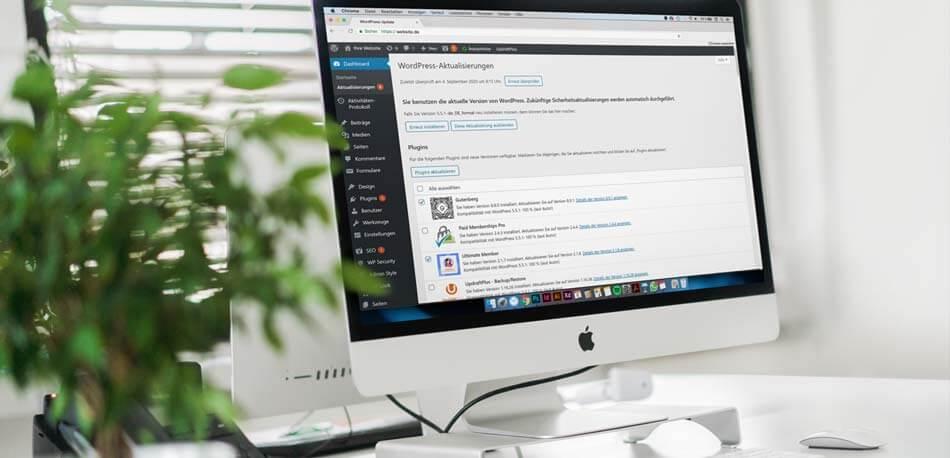 WordPress Update: So aktualisieren Sie WordPress, Plugins und Themes