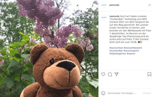 Contentbär Instagram
